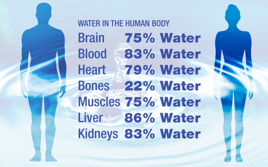 Why Is Water Important And How Much Should We Drink?